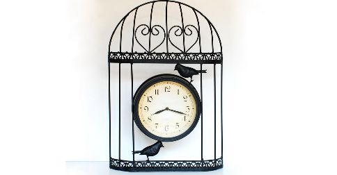 The time cage